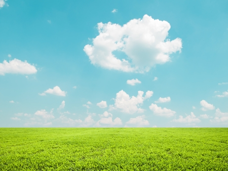 Beautiful green field and blue sky - natural landscape view