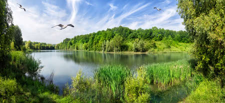 Photo for Bend the river with green trees on the shore - Royalty Free Image