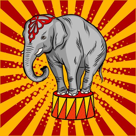 Illustration pour Circus elephant on pedestal pop art style vector - image libre de droit