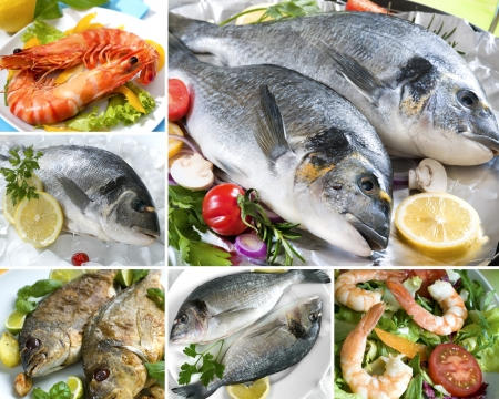 collage from photographs of different seafood product