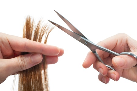 Photo pour hands of hairdresser cutting woman's  hair isolated on white - image libre de droit