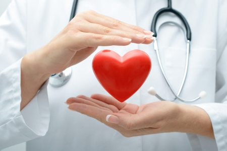 Photo for Female doctor with the stethoscope holding heart - Royalty Free Image