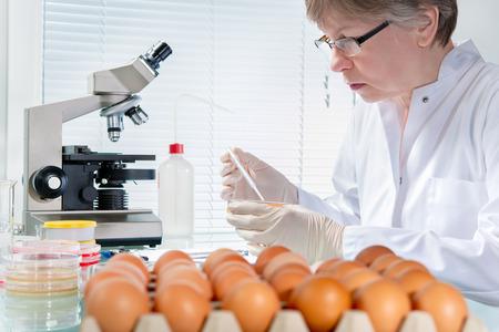Foto de Quality control expert inspecting at chicken eggs in the laboratory - Imagen libre de derechos