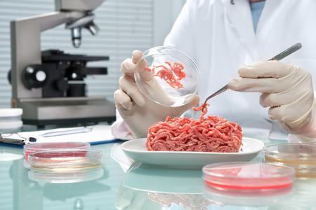 Foto de Food quality control expert inspecting at meat specimen in the laboratory - Imagen libre de derechos