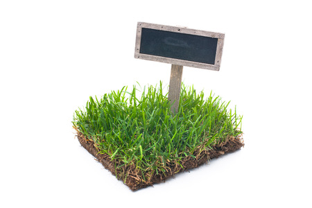 Photo pour empty sign in green grass Isolated on white background - image libre de droit