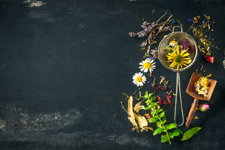 Photo for Wildflowers and various herbs for herbal tea - Royalty Free Image