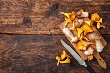Photo for Porcini and chanterelle mushrooms on a cutting board with knife on a rustic background. Lots of copy space - Royalty Free Image