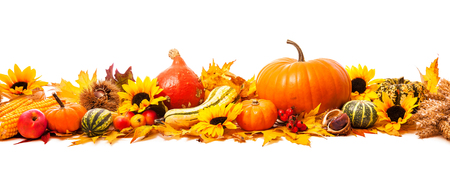 Foto de Autumn decoration arranged with dry leaves, pumpkins and more, isolated on white, wide format - Imagen libre de derechos