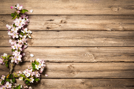 Photo for Spring flowering branch on wooden background. Apple blossoms - Royalty Free Image
