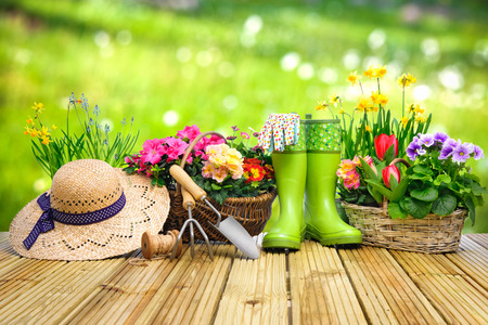 Photo for Gardening tools and flowers on the terrace in the garden - Royalty Free Image