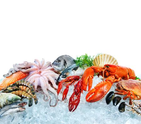 Photo pour Fresh fish and seafood arrangement on crushed ice - image libre de droit