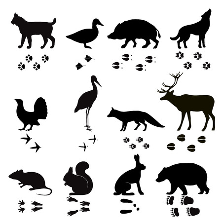 Ilustración de Wild animals vector paw footsteps black silhouette shape isolated on white background. Animals steps, foot, footprint set vector illustration. Animals foot steps shapes vector silhouette - Imagen libre de derechos