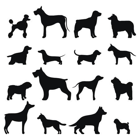 Ilustración de Dog breed vector black silhouette. - Imagen libre de derechos