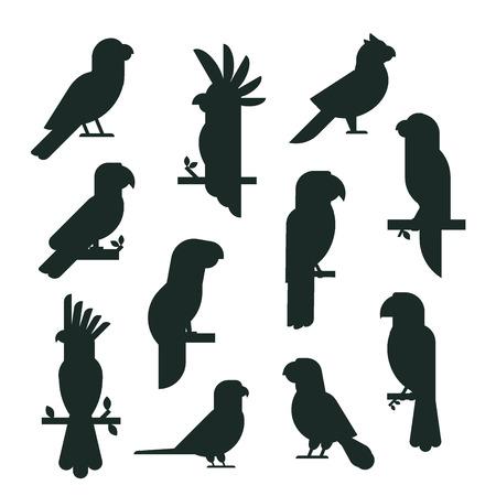 Ilustración de A silhouette different kind of birds vector illustration. - Imagen libre de derechos