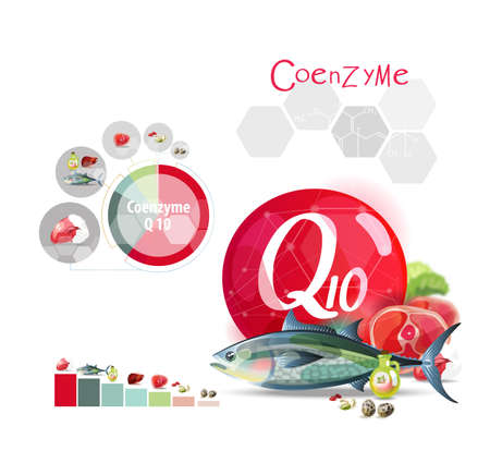 Illustration for Coenzyme Q10. Top natural organic foods high in trace element. - Royalty Free Image