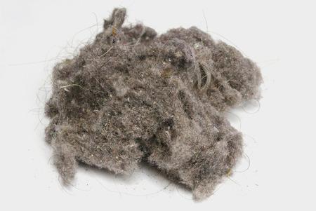 Photo pour Dust ball over a white background. House dust can produce allergies. Dust bunny - image libre de droit