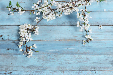 Photo pour flowers on wooden background - image libre de droit