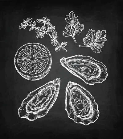 Illustration pour Oysters chalk sketch. - image libre de droit
