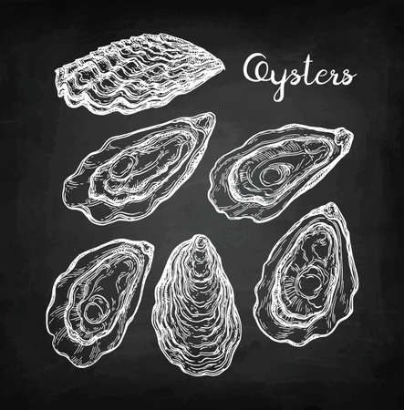Illustrazione per Oysters chalk sketch. - Immagini Royalty Free