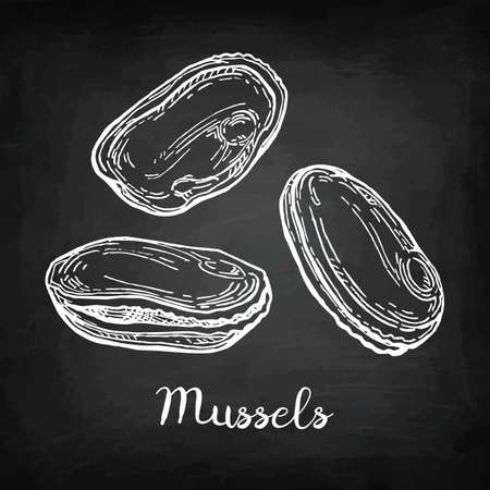 Illustration pour Chalk sketch of mussels - image libre de droit