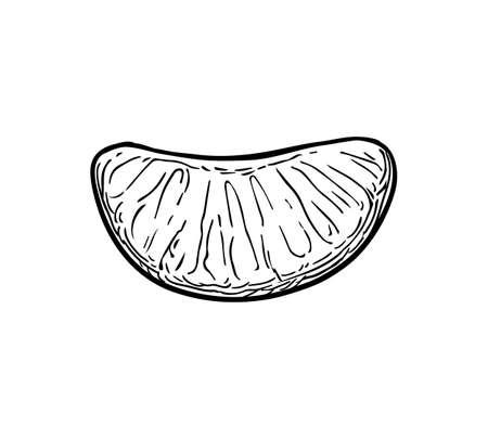 Ilustración de Slice of of mandarin orange. Ink sketch isolated on white background. Hand drawn vector illustration. Retro style. - Imagen libre de derechos