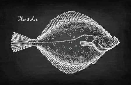 Ilustración de Chalk sketch of flounder - Imagen libre de derechos