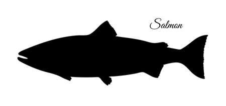 Ilustración de Silhouette of salmon. Hand drawn vector illustration of fish isolated on white background. Retro style. - Imagen libre de derechos