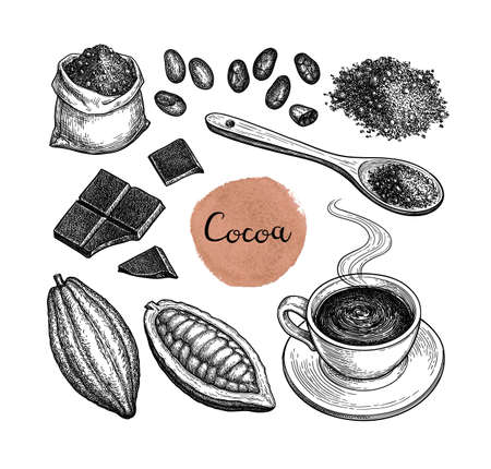 Illustration for Cocoa and chocolate set. Ink sketch isolated on white background. Hand drawn vector illustration. Retro style. - Royalty Free Image