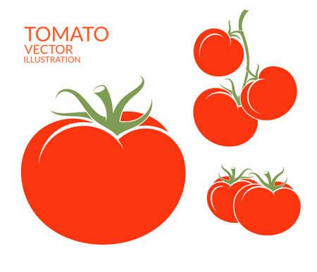 Illustration pour Tomato. Isolated vegetables on white background - image libre de droit