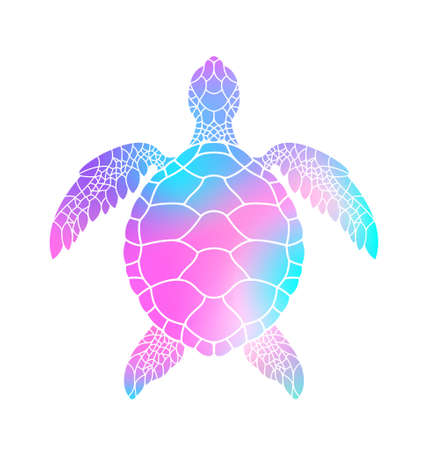 Illustration for Colorful turtle. Vector illustration - Royalty Free Image