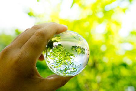 Foto de Green & Eco environment, glass globe in the garden - Imagen libre de derechos
