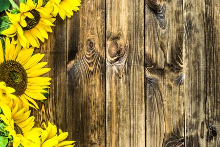 Photo pour Sunflowers on wooden background, autumn flowers - image libre de droit