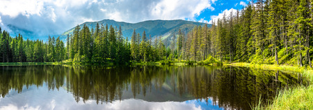 Photo pour Mountain lake in the forest, Tatra Mountains, National Park in Poland, summer landscape - image libre de droit