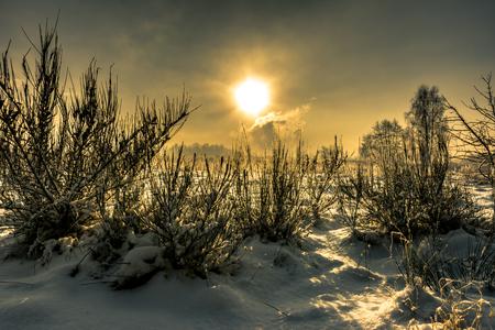 Photo pour Winter landscape with sky and sun, moody scene - image libre de droit