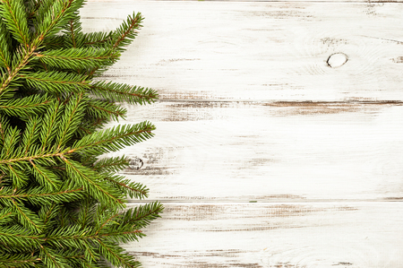 Photo for Green fir branch on white wooden background - Royalty Free Image
