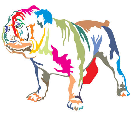 Illustration for Colorful decorative portrait of standing in profile English bulldog, vector isolated illustration on white background - Royalty Free Image