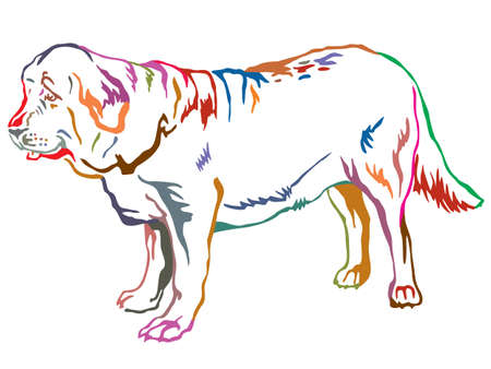 Ilustración de Colorful contour decorative portrait of standing in profile dog Spanish Mastiff. - Imagen libre de derechos