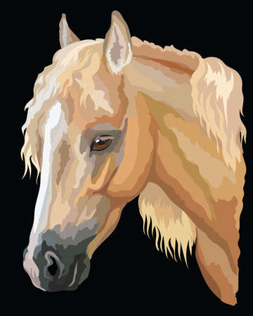 Illustration pour Colored portrait of palomino Welsh Pony. Horse head with long mane in profile isolated vector illustration on black background - image libre de droit