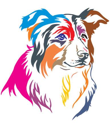 Ilustración de Colorful decorative portrait of dog Border Collie, vector illustration in different colors isolated on white background - Imagen libre de derechos