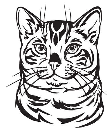 Illustrazione per Decorative portrait in profile of Bengal Cat, vector isolated illustration in black color on white background - Immagini Royalty Free