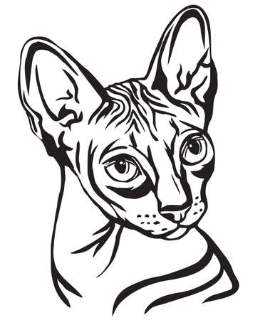 Illustrazione per Decorative portrait in profile of Sphynx Cat, vector isolated illustration in black color on white background - Immagini Royalty Free