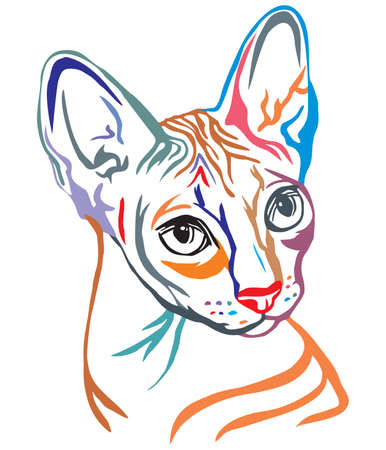 Illustrazione per Colorful decorative portrait in profile of Sphynx Cat, contour vector isolated illustration in black color on white background - Immagini Royalty Free