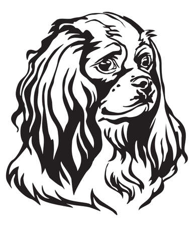 Illustrazione per Decorative portrait of Dog Cavalier King Charles Spaniel, vector isolated illustration in black color on white background. Image for design and tattoo. - Immagini Royalty Free
