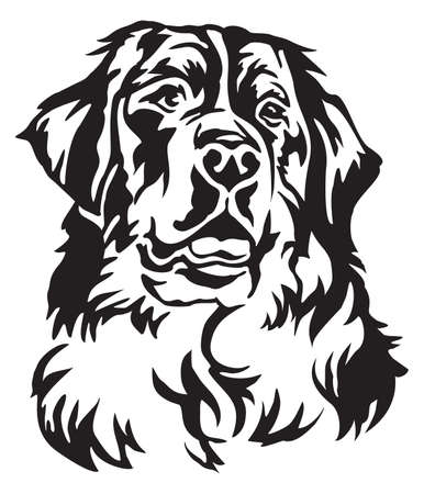 Illustration for Decorative portrait of Bernese Mountain Dog, vector isolated illustration in black color on white background - Royalty Free Image