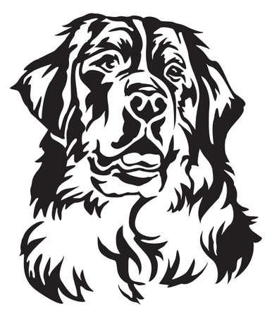 Illustration pour Decorative portrait of Bernese Mountain Dog, vector isolated illustration in black color on white background - image libre de droit