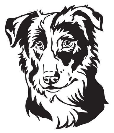 Ilustración de Decorative portrait of dog Border Collie, vector isolated illustration in black color on white background - Imagen libre de derechos