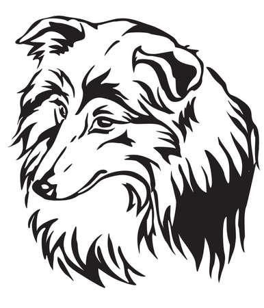 Illustration pour Decorative portrait of dog Shetland Sheepdog (Sheltie), vector isolated illustration in black color on white background - image libre de droit