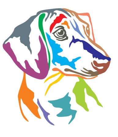 Illustrazione per Colorful decorative portrait in profile of dog Dachshund, vector illustration in different colors isolated on white background - Immagini Royalty Free