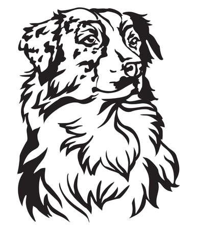 Illustrazione per Decorative portrait of dog Australian shepherd, vector isolated illustration in black color on white background - Immagini Royalty Free