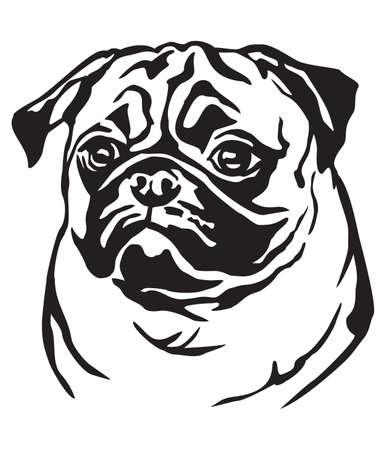 Illustrazione per Decorative portrait of dog Pug, vector isolated illustration in black color on white background - Immagini Royalty Free